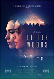 Little Woods (2018) poster