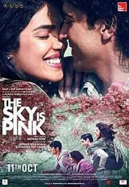 The Sky Is Pink poster